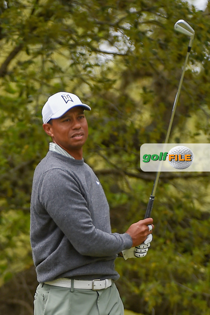Tiger Woods (USA) watches his tee shot on 10 during day 4 of the WGC Dell Match Play, at the Austin Country Club, Austin, Texas, USA. 3/30/2019.<br /> Picture: Golffile   Ken Murray<br /> <br /> <br /> All photo usage must carry mandatory copyright credit (© Golffile   Ken Murray)