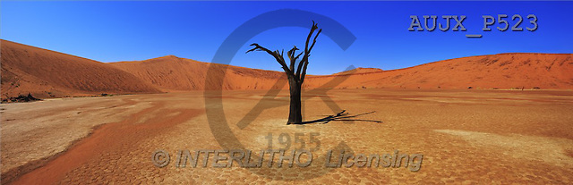 Dr. Xiong, LANDSCAPES, panoramic, photos, Sossusvlei, Namib, Naukluft NP, Namibia(AUJXP523,#L#)