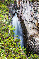 One of the several waterfalls in Beauty Creek slot canyon in Jasper National Park