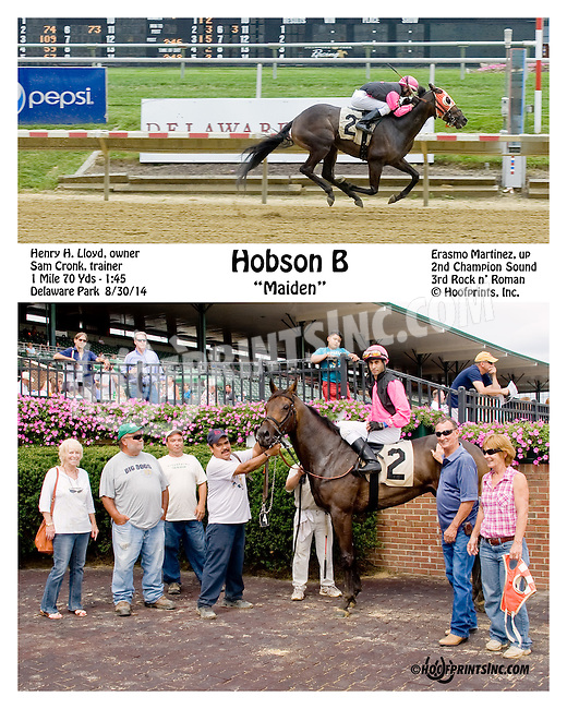 Hobson B winning at Delaware Park on 8/30/14