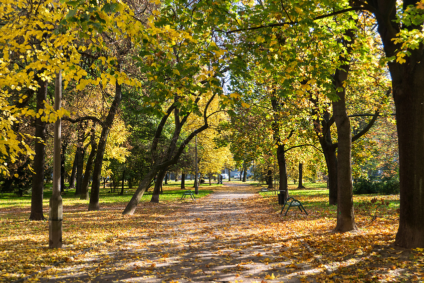 Nowa Huta – park Szwedzki.