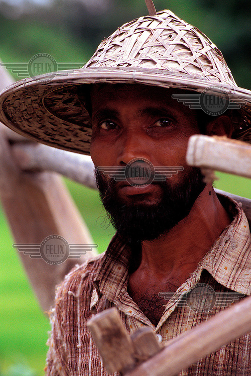 Rice farmer at the end of his day's work carries his wooden plough back home from the paddy fields to his village.