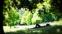 18/06/14 <br /> <br /> A man relaxes in the shade in Hyde Park London, as temperatures reach 24 degrees.<br /> <br /> All Rights Reserved - F Stop Press. www.fstoppress.com. Tel: +44 (0)1335 300098