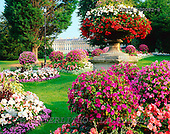 Tom Mackie, FLOWERS, photos, Royal Crescent Flower Garden, Bath, Avon, England, GBTM200082-8,#F# Garten, jardín