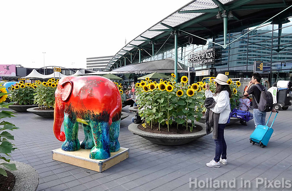 Nederland Amsterdam Schiphol -  2018.  Elephant Parade is coming home to The Netherlands, the country where it all started. From 1 to 30 September 2018, 34 elephants will exhibit at Schiphol airport. As one of the busiest airports in Europe, it's the perfect setting to raise awareness and funds for the Asian elephant.  Foto Berlinda van Dam / Hollandse Hoogte