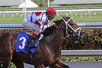 January 17, 2015:  J S Bach  (FL) with jockey John Velazquez on board breaks his maiden on Sunshine Millions day at  Gulfstream Park in Hallandale Beach, Florida. Liz Lamont/ESW/CSM