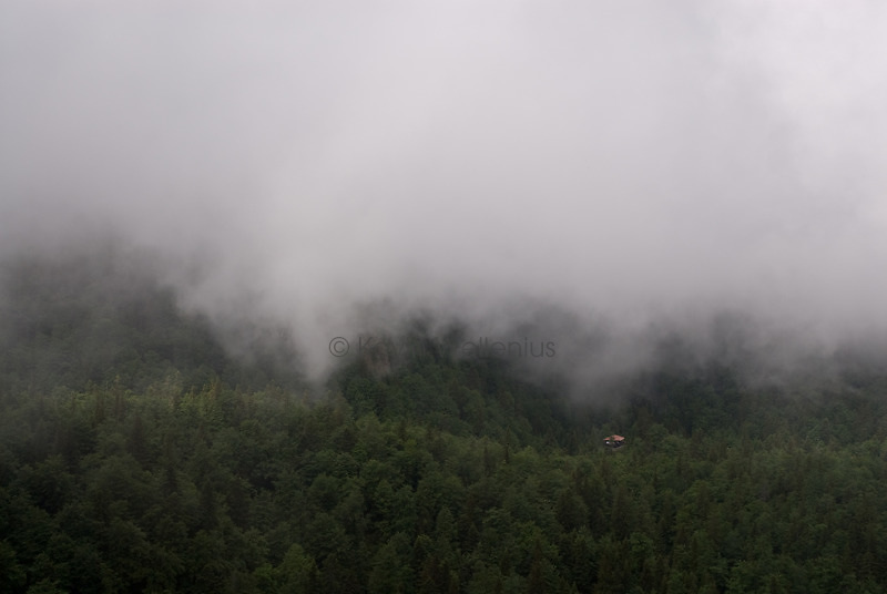 A hut for hikers appears in the forest amidst the low clouds.