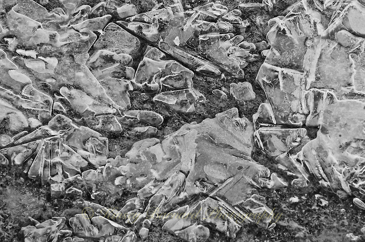Black and white image of ice formations on a river