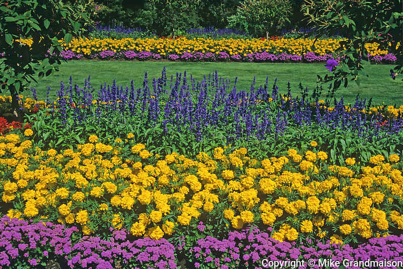 flower garden in Stanley Park<br /> Vancouver<br /> British Columbia<br /> Canada