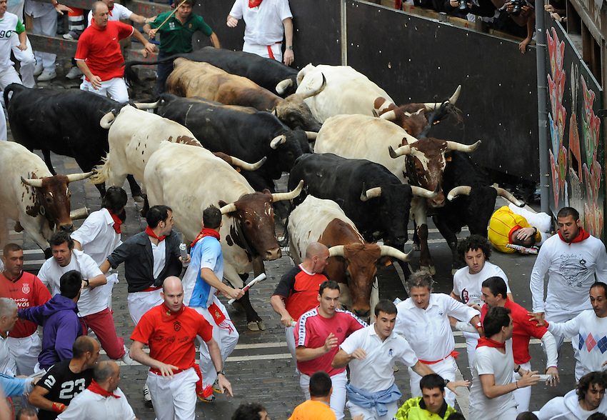 San Fermin, July. Pamplona : Participants run with fighting bulls during a  San Fermin bull run in Pamplona. On each day of the San Fermin festival six bulls are released at 8:00 a.m. (0600 GMT) to run from their corral through the narrow, cobbled streets of the old navarre town over an 850-meter (yard) course. Ahead of them are the runners, who try to stay close to the bulls without falling over or being gored. Photo: Ander Gillenea.