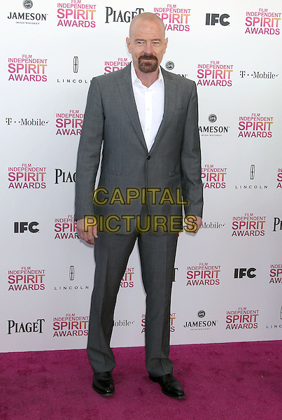 Bryan Cranston.2013 Film Independent Spirit Awards - Arrivals held at Santa Monica Beach..Santa Monica, California, USA,.23rd February 2013..indy indie indies indys full length suit suit grey gray white shirt goatee facial hair .CAP/ADM/RE.©Russ Elliot/AdMedia/Capital Pictures