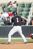 Hunter Jones (1) of the Kannapolis Intimidators at bat against the Hagerstown Suns at CMC-Northeast Stadium on May 31, 2014 in Kannapolis, North Carolina.  The Intimidators defeated the Suns 3-2 in game one of a double-header.  (Brian Westerholt/Four Seam Images)