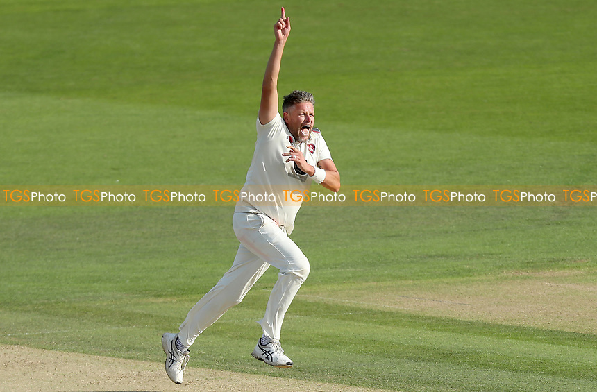Mitchell Claydon of Kent celebrates taking the wicket of Ryan ten Doeschate during Kent CCC vs Essex CCC, Specsavers County Championship Division 1 Cricket at the St Lawrence Ground on 20th August 2019