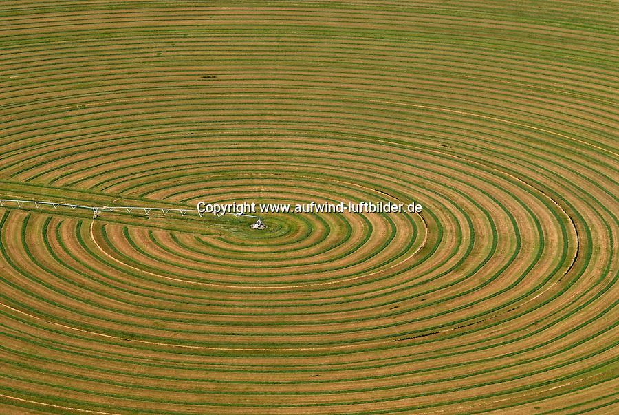 4415 / Feld: AMERIKA, VEREINIGTE STAATEN VON AMERIKA, UTAH,  (AMERICA, UNITED STATES OF AMERICA), 24.07.2006:rundes Feld, Bewaesserung, Futtermittel, Gras, Heu, Viehfutter, in der Wueste von Utah wird Viehfutter erzeugt