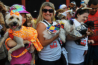 People with dogs dressed in carnivals costume take part in the animals carnival, Copacabana, Brazil, February 3, 2013. (Austral Foto/Renzo Gostoli).
