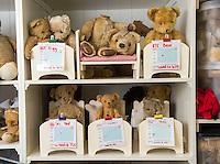 BNPS.co.uk (01202 558833)<br /> Pic: PhilYeomans/BNPS<br /> <br /> The poorly teddy bear ward with patients awaiting their treatments.<br /> <br /> Broken bears and deteriorating dolls from all over the world are being brought back to life by a UK team of dedicated doctors and nurses at one of the last remaining toy hospitals.<br /> <br /> The team at Alice's Bear Shop, a teddy bear and doll hospital in Lyme Regis, Dorset, perform all kinds of 'surgery' from simple restringing and re-stuffing to head re-attachments and complete skin grafts.<br /> <br /> Rikey Austin, 49, opened the hospital in January 2000 but also ran a shop and only repaired one or two toys a month.<br /> <br /> Now she has a four-month waiting list for patients and has had to close the shop to focus on the hospital side of the business.