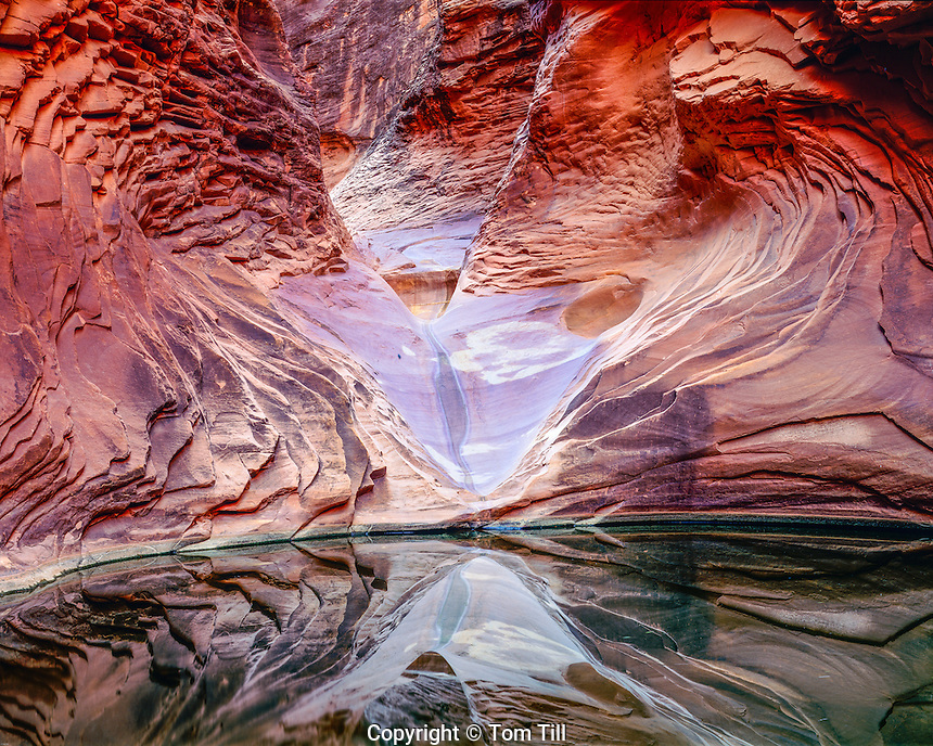 Pool in North Canyon, Grand Canyon National Park, Arizona, Colorado River Marble Canyon, River Mile 20, Supai sandstone, August