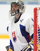 Branislav Konrad (HKm Nitra - Slovakia) The Suisse defeated Slovakia 2-1 in a 2007 World Juniors match on January 2, 2007, at FM Mattson Arena in Mora, Sweden.