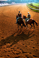 ©Mitch Wojnarowicz Photographer.Saratoga Springs NY Exercise riders take horses for a morning workout at sunrise at the thoroughbred horse racing track here..20030823.Not a royalty free image. COPYRIGHT PROTECTED.www.mitchw.com.www.mitchwblog.com.518 843 0414_Mitchw@nycap.rr.com.ANY USE REQUIRES A WRITTEN LICENSE.NO Model release for this image