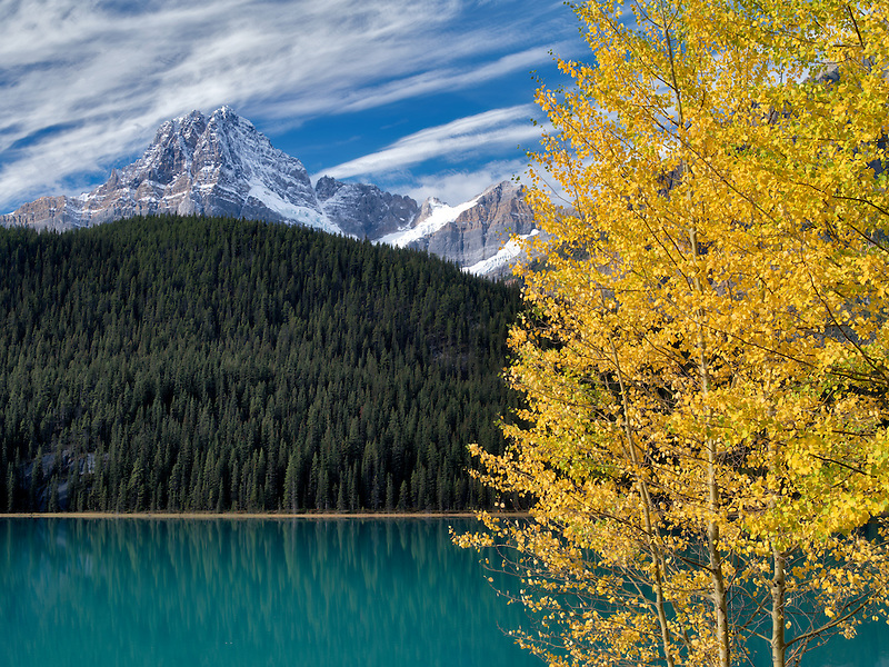 Waterfall Lakes and House Peake with fall colored aspens. Banff National Park. Alberta, Canada