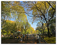NEW YORK, NY - OCTOBER 17: Photograph of Central Park's Poet's Walk in fall on October 19, 2012 in New York, New York. Photo Credit: Thomas R. Pryor