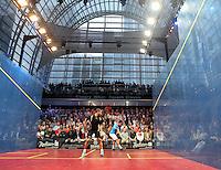 2014 Squash