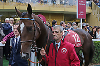 October 07, 2018, Longchamp, FRANCE - Patacoy (No. 12) in the Parade Ring before the Qatar Prix de l'Arc de Triomphe (Gr. I) at  ParisLongchamp Race Course  [Copyright (c) Sandra Scherning/Eclipse Sportswire)]