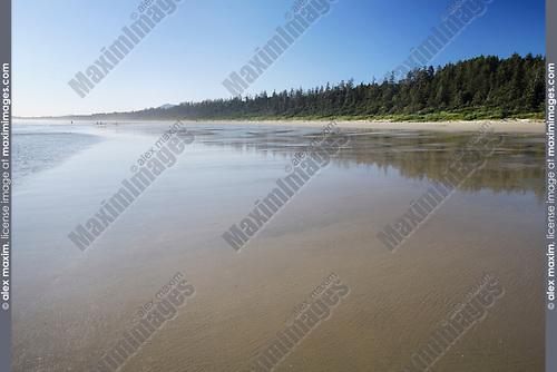 Pacific Rim National Park Reserve, Long Beach at Green Point with Rain forest trees along the shoreline of the Pacific ocean. Tofino, Vancouver Island, BC, Canada. Image © MaximImages, License at https://www.maximimages.com