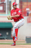 Reading Phillies 2011
