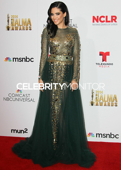 PASADENA, CA, USA - OCTOBER 10: Edy Ganem poses in the press room at the 2014 NCLR ALMA Awards held at the Pasadena Civic Auditorium on October 10, 2014 in Pasadena, California, United States. (Photo by Celebrity Monitor)