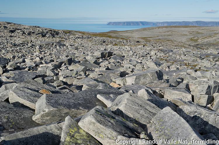 Høyfjellsterreng på Sværholthalvøya. Norkynn i bakgrunnen. ----  Sværholt peninsula.