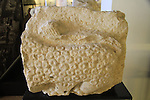 A decorated fragment of a lintel from Nabratein ancient Synagogue, talmudic period, at the Hecht Museum, the University of Haifa