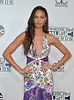LOS ANGELES, CA - NOVEMBER 20: Joan Smalls at the 44th Annual American Music Awards at the Microsoft Theatre in Los Angeles, California on November 20, 2016. Credit: Koi Sojer/Snap'N U Photos/MediaPunch
