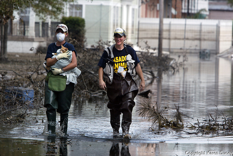 Pasados volunteers Vet Leea Dum from Las Vegas (left) and Rita Laws from Monroe,WA (right) walk down Palmyra St and S. Alexander  inNew Orleans after rescuing a cat.  © Karen Ducey