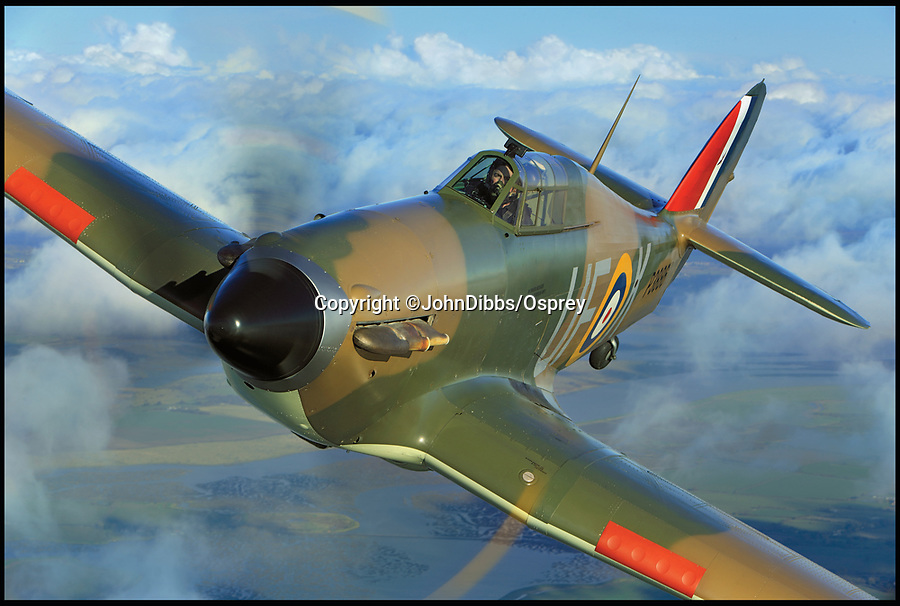 BNPS.co.uk (01202 558833)<br /> Pic: JohnDibbs/Osprey/BNPS<br /> <br /> AE977 in the colours of Battle of Britain Hurricane P3886.<br /> <br />  Last of the Few - A photographer's stunning new book is a tribute to the last Hawker Hurricane's - the true workhorse of the Battle of Britain.<br /> <br /> Only 13 WW2 Hurricanes are still airworthy today, compared to over 60 of their more glamorous counterpart the Spitfire.<br /> <br /> But during the Battle of Britain there were in fact twice as many Hurricane's as Spitfires taking on Hitlers Luftwaffe in the skies over southern England.<br /> <br /> The Hurricane may be viewed as less glamorous than the Spitfire, but these stunning photographs reveal just how majestic it was in full flight.<br /> <br /> Photographer John Dibbs has got up close and personal to the legendary fighter planes in order to capture them like never before.<br /> <br /> His 10 year quest for surviving Hurricanes took him all over the world and he photographed them in England, France, the United States and New Zealand.<br /> <br /> Using the skill and experience of highly experienced RAF and civilian pilots, Mr Dibbs was able to fly to within 15ft of some of the last remaining Hurricanes - with breath-taking results.<br /> <br /> There was a fair degree of skill involved as he took the photos from the canopy of a Second World War trainer aircraft which was travelling at 200mph while confronting wind blast.<br /> <br /> The thrilling photos were taken for an a definitive history of the Hurricane which is told by Mr Dibbs and aviation historians Tony Holmes and Gordon Riley in their new book Hurricane, Hawker's Fighter Legend.