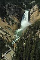 Lower Falls of the Yellowstone River, Canyon area, Yellowstone National Park. Look closely in the lower left corner and you will see the almost river level observation deck which visitors can hike to during the summer months. Warning, steep steep climb!