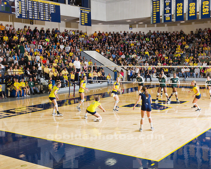 The University of Michigan volleyball team defeated Michigan State, 3-1, at Cliff Keen Arena in Ann Arbor, Mich., on November 23, 2011.