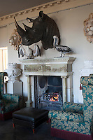 The head of a rhinoceros flanked by a pair of pelicans dominates the fireplace in the entrance hall