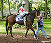 School House before The With Anticipation at Delaware Park on 9/26/13