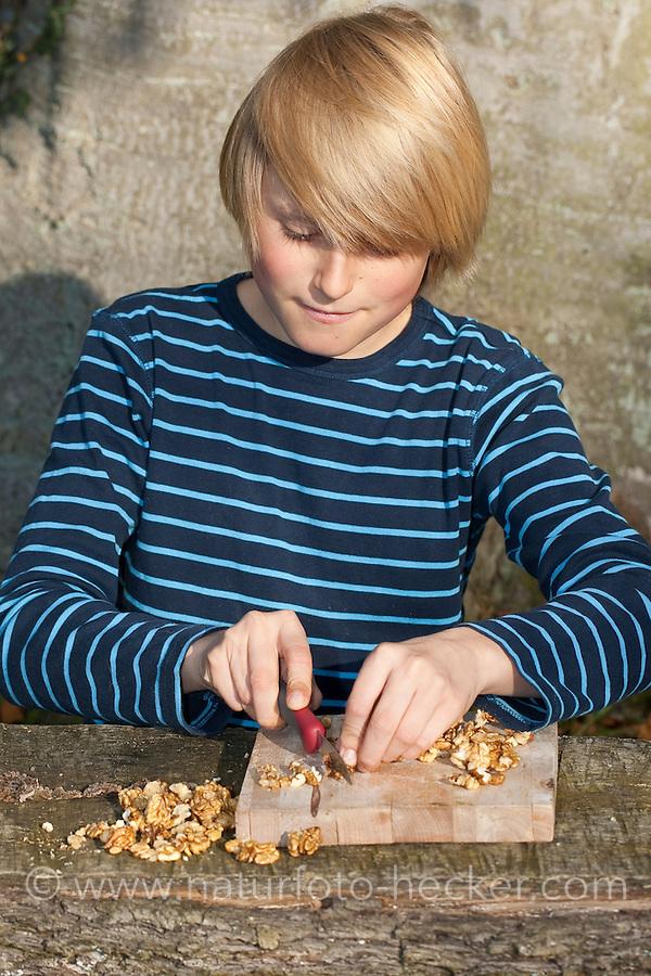 Kind, Junge macht Pesto aus Walnüssen, Sonnenblumenkernen, Olivenöl und Parmesankäse selbst, Walnüsse werden mit einem Messer zerkleinert, Walnuss, Walnuß, Wal-Nuss, Wal-Nuß, Nüsse, Ernte, Juglans regia, Walnut, Noyer commun, Sonnenblumen, Helianthus, Sunflower