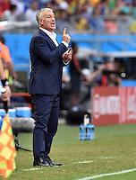 FUSSBALL WM 2014  VORRUNDE    GRUPPE E     Schweiz - Frankreich                   20.06.2014 Trainer Laurent Blanc (Frankreich) engagiert an der Seitenlinie