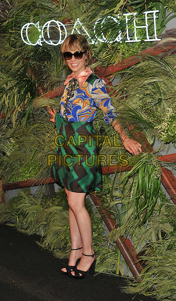 New York,NY- June 22: Parker Posey attends the '2016 Coach And Friends Of The High Line Summer Party' at The High Line on June 22, 2016 in New York City. <br /> CAP/MPI/JP<br /> &copy;JP/MPI/Capital Pictures