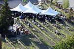 Karma Vineyards located in the Lake Chelan Valley holds numerous wine parties for its wine club members.