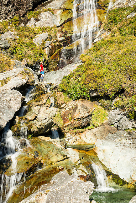 Female tramper admiring Routeburn Falls, Mt. Aspiring National Park, UNESCO World Heritage Area, Central Otago, New Zealand, NZ