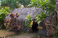 Recreated Hawaiian hut used for a prime minister's house amid ti plants, Kamokila Hawaiian Village, Wailua River Valley, Kauai.