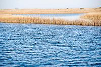 The undeveloped Masonboro Island