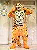 The Tiger Who Came To Tea<br /> by  Judith Kerr<br /> at the Vaudeville Theatre, London, Great Britain <br /> Press photocall<br /> 6th July 2011 <br /> <br /> Alan Atkins (as Tiger / Daddy)<br /> <br /> Photograph by Elliott Franks