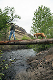 USA, Oregon, Joseph, ranch hand Cody Ross crosses Big Sheep Creek on a large log