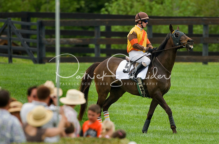 A jockey prepares before a race during the Queen's Cup Steeplechase in Mineral Springs, NC.