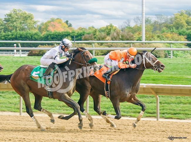 Bold Senator winning at Delaware Park on 10/17/15